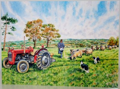 Blank Greeting Card with envelope for any Occasion Massey Ferguson Tractor 10453