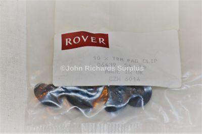 Rover Door Trim Clip Pack x10 CZH6016