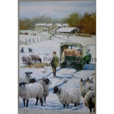 Blank Greeting Card with envelope for any Occasion Feeding the Sheep 10582