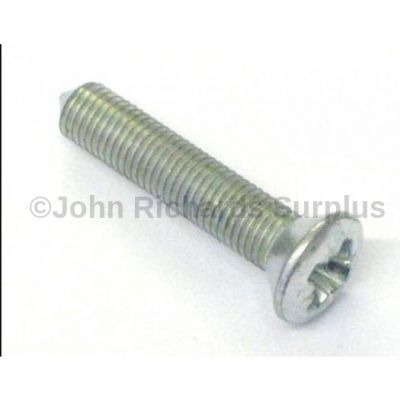 Door Hinge Screw 79221