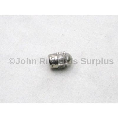 Chrome valve cap