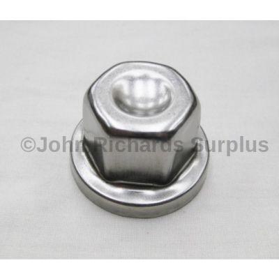 Alloy Wheel Lock Nut Cover RRJ100120